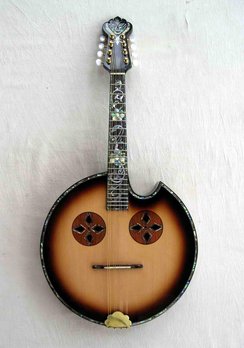 has anyone built a wood topped banjo discussion forums banjo