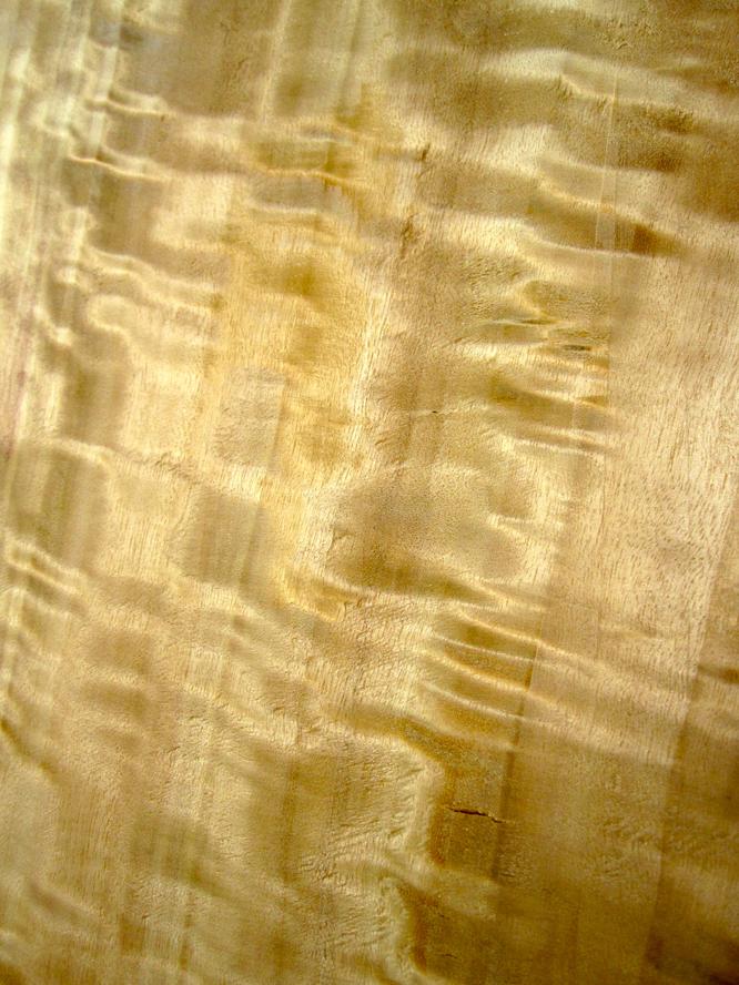 Poplar as neck and tailblock [Archive] - Mandolin Cafe Forum